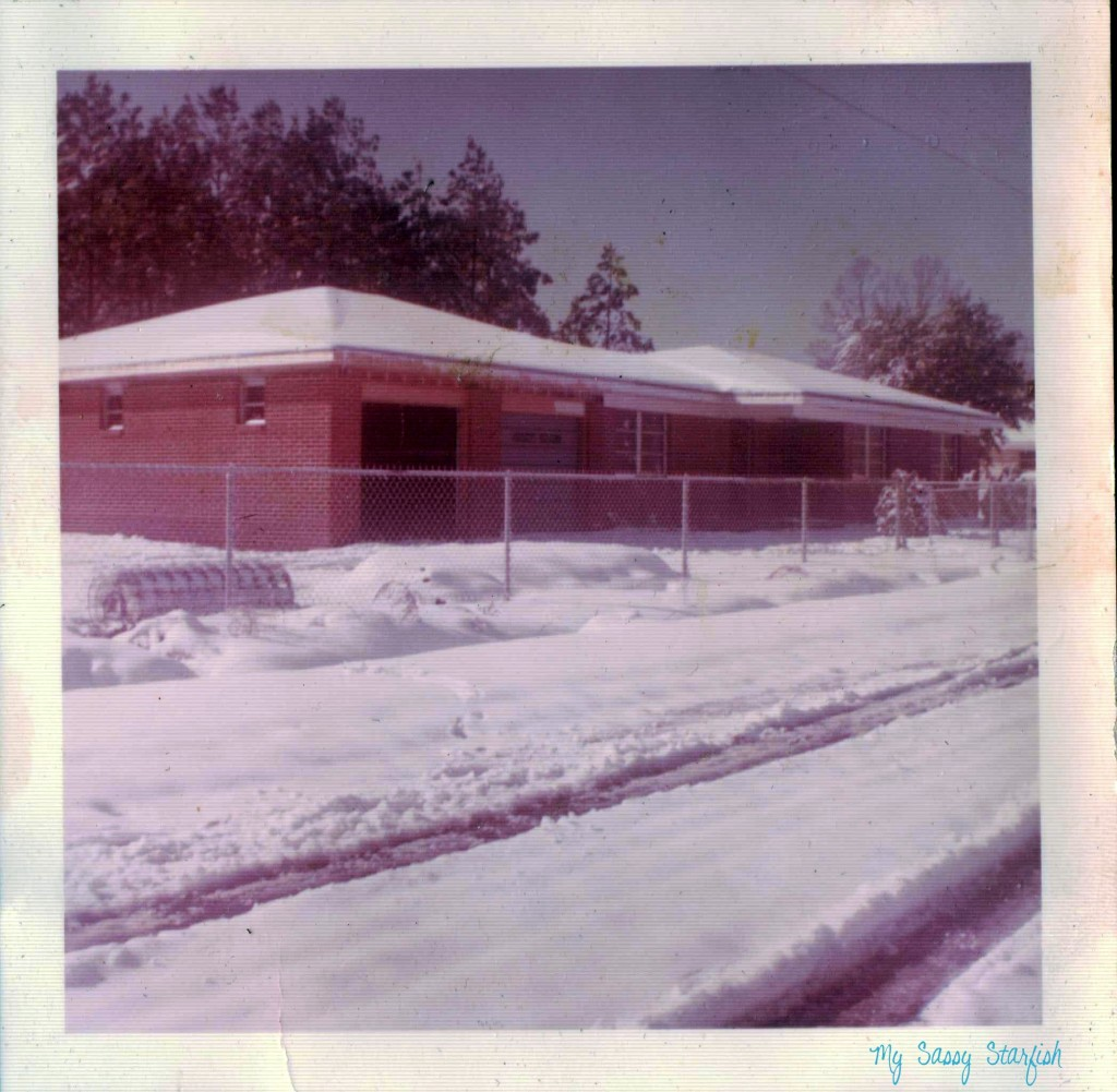 Snowy House in D'Iberville