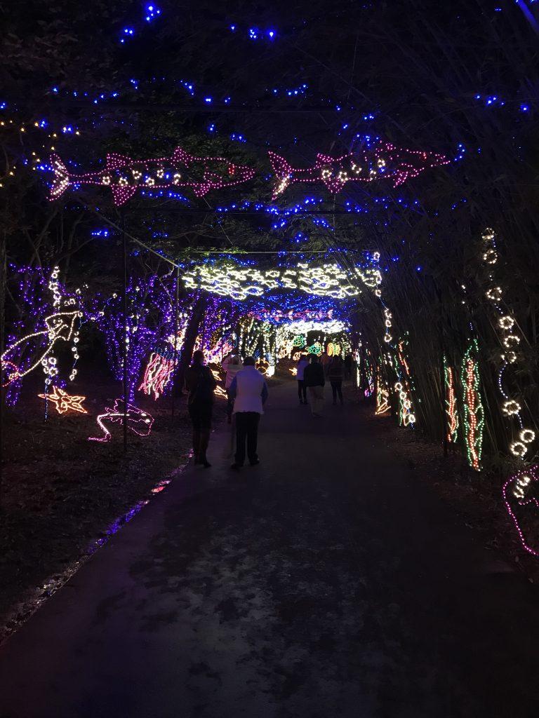 Best Christmas Light Displays Gulf Coast