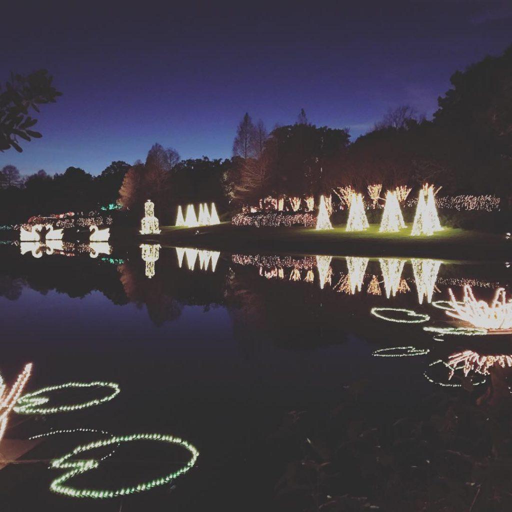 Best Gulf Coast Christmas Light Displays